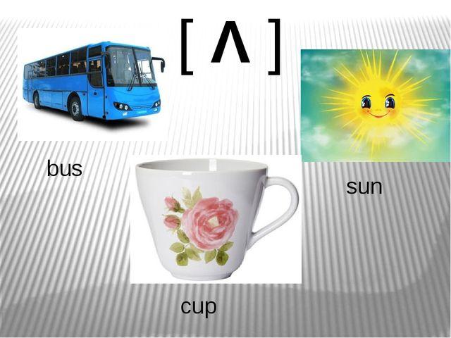 [Λ] bus cup sun