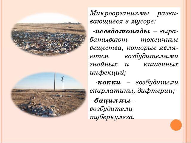 Микроорганизмы разви-вающиеся в мусоре: -псевдомонады – выра-батывают токсичн...