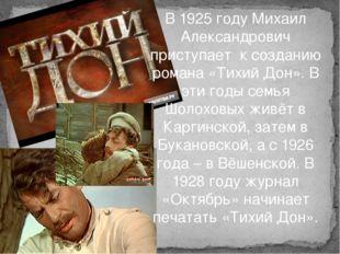 В 1925 году Михаил Александрович приступает к созданию романа «Тихий Дон». В