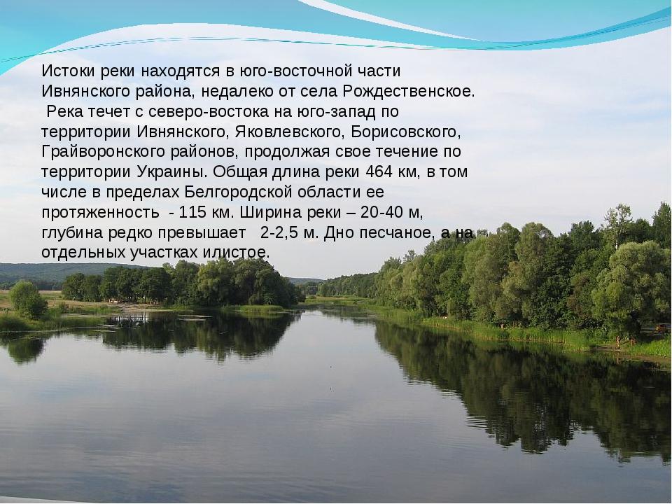 Истоки реки находятся в юго-восточной части Ивнянского района, недалеко от се...