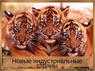 Новые индустриальные страны Рябова Л.Н.