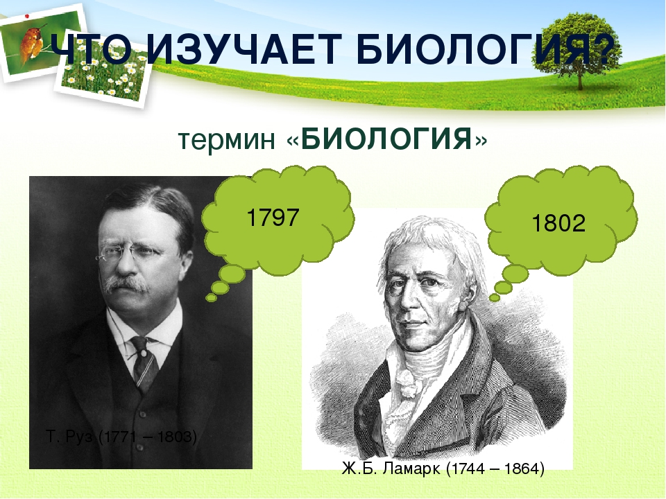 ЧТО ИЗУЧАЕТ БИОЛОГИЯ? термин «БИОЛОГИЯ» Т. Руз (1771 – 1803) 1797 1802 Ж.Б. Л...