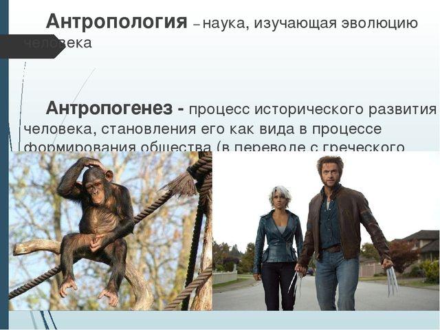 Антропология – наука, изучающая эволюцию человека   Антропогенез - процес...