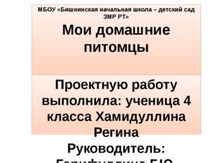 МБОУ «Бишнинская начальная школа – детский сад ЗМР РТ» Мои домашние питомцы П
