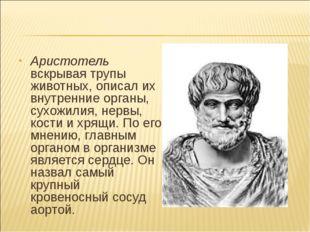 Аристотель вскрывая трупы животных, описал их внутренние органы, сухожилия, н