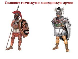 Сравните греческую и македонскую армии