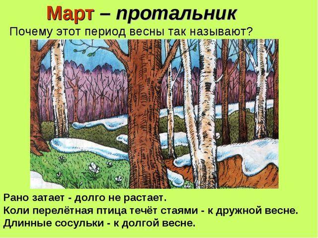 Март – протальник Почему этот период весны так называют? Рано затает - долго...