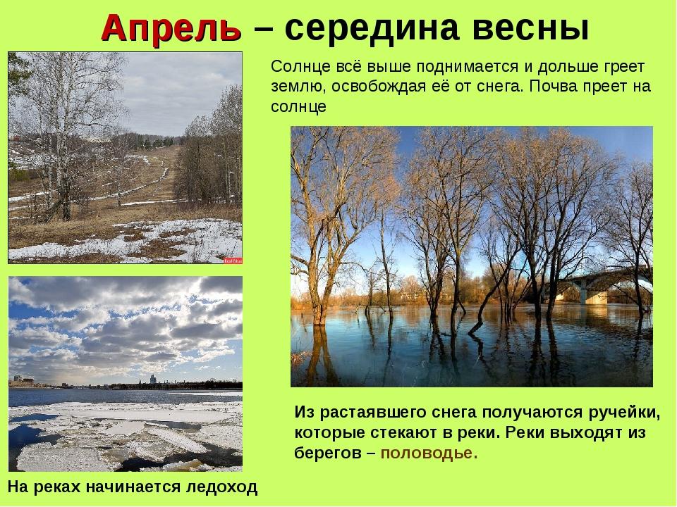 Апрель – середина весны Солнце всё выше поднимается и дольше греет землю, осв...