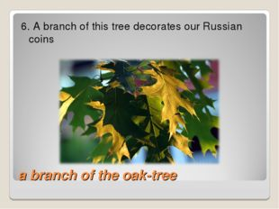 a branch of the oak-tree 6. A branch of this tree decorates our Russian coins