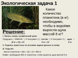 Какое количество планктона (в кг) необходимо, чтобы в водоёме выросла щука
