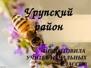 Урупский район ПОДГОТОВИЛА УЧИТЕЬ НАЧАЛЬНЫХ КЛАССОВ ГОРНОСТАЕВА АНТОНИНА ВИКТ