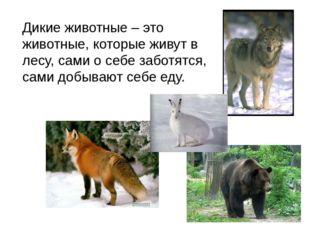 Дикие животные – это животные, которые живут в лесу, сами о себе заботятся, с