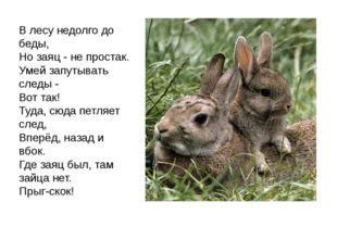В лесу недолго до беды, Но заяц - не простак. Умей запутывать следы - Вот так
