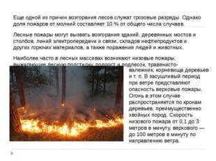 Еще одной из причин возгорания лесов служат грозовые разряды. Однако доля пож