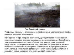 Торфяные пожары — это пожары на торфяниках, в местах залежей торфа, горючего