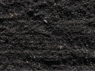 Ход работы: Изучить теоретические основы по данной теме; Определить рН почвы,