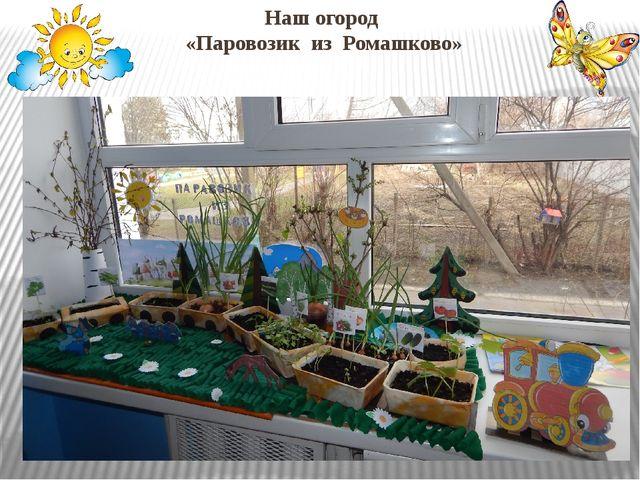 Наш огород «Паровозик из Ромашково»