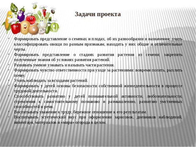 Задачи проекта Формировать представление о семенах и плодах, об их разнообраз...