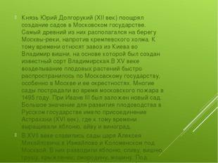 Князь Юрий Долгорукий (XII век) поощрял создание садов в Московском государс