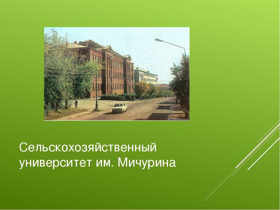 Сельскохозяйственный университет им. Мичурина