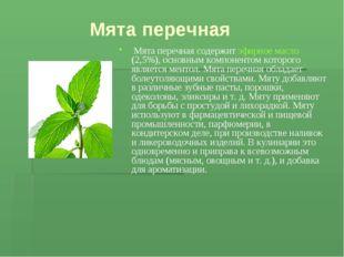 Мята перечная Мята перечная содержит эфирное масло (2,5%), основным компонен