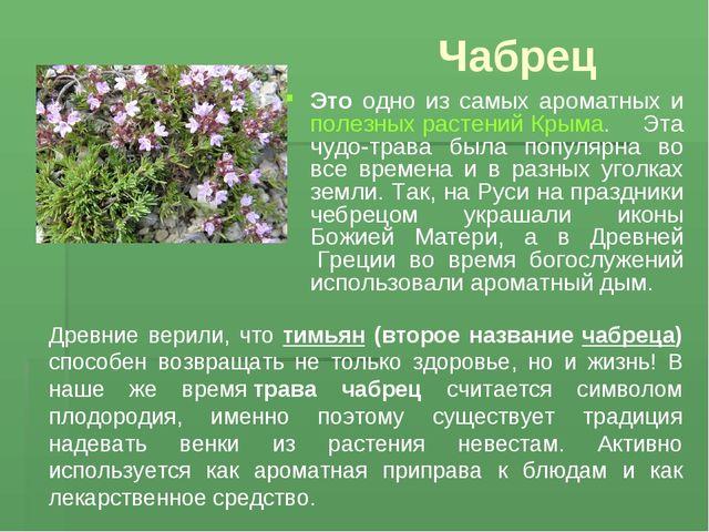 Чабрец Это одно из самых ароматных и полезных растений Крыма. Эта чудо-трава...