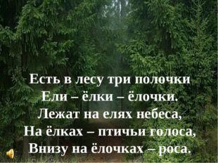 Есть в лесу три полочки Ели – ёлки – ёлочки. Лежат на елях небеса, На ёлках –