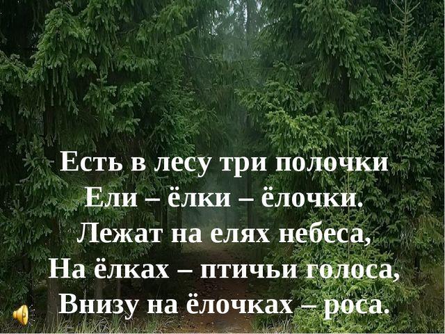 Есть в лесу три полочки Ели – ёлки – ёлочки. Лежат на елях небеса, На ёлках –...
