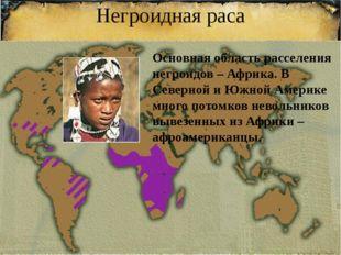 Негроидная раса Основная область расселения негроидов – Африка. В Северной и