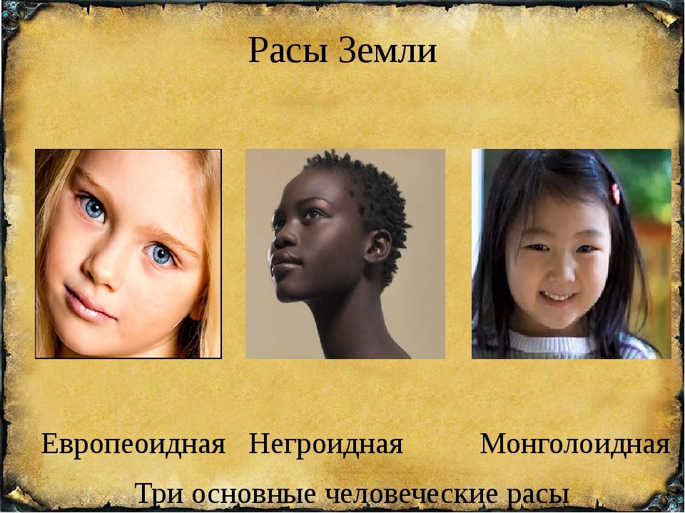 Расы Земли Европеоидная Негроидная Монголоидная Три основные человеческие расы