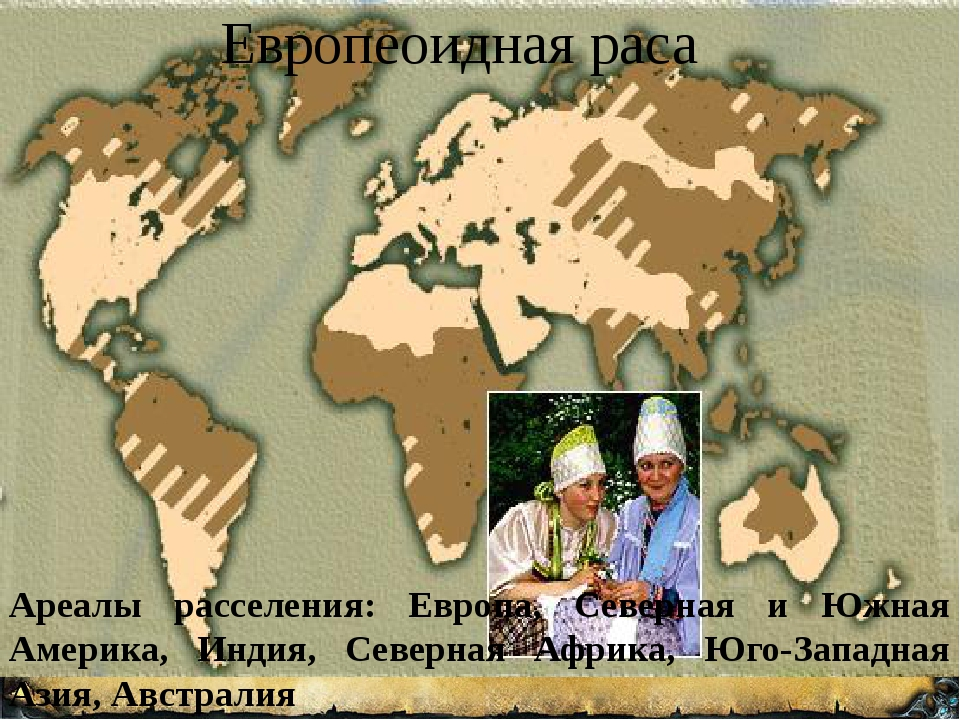 Европеоидная раса Ареалы расселения: Европа, Северная и Южная Америка, Индия...