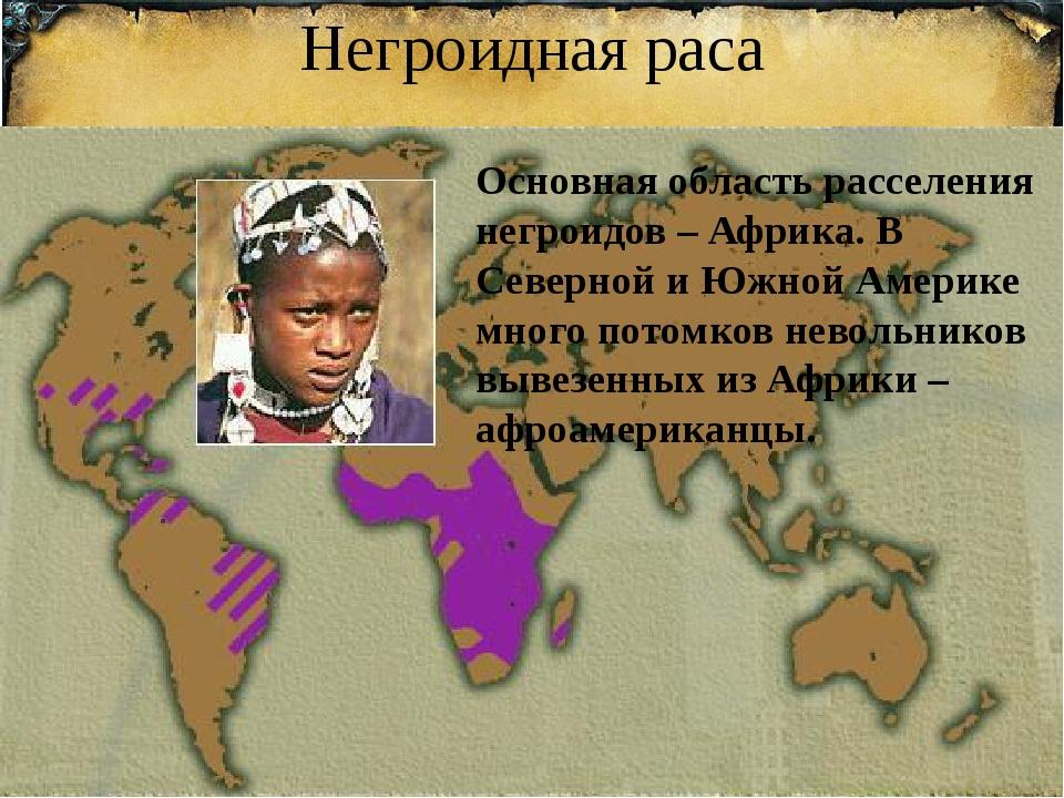 Негроидная раса Основная область расселения негроидов – Африка. В Северной и...