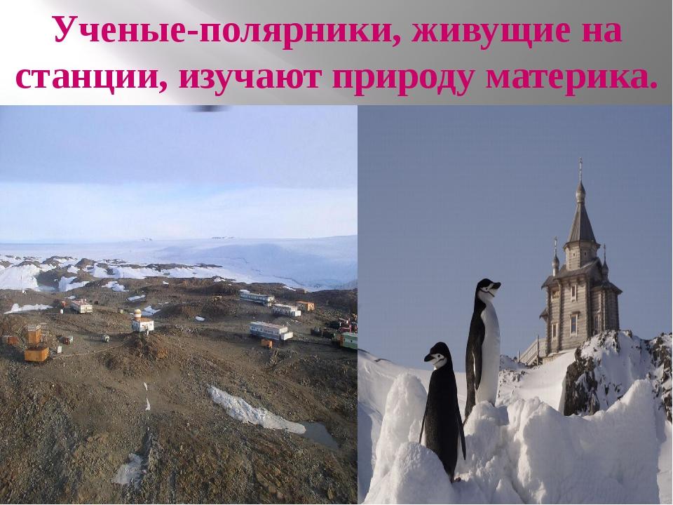 Ученые-полярники, живущие на станции, изучают природу материка.
