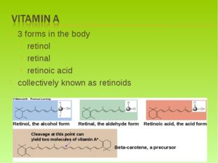 3 forms in the body retinol retinal retinoic acid collectively known as retin