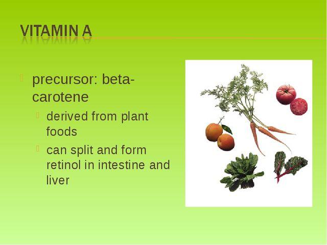 precursor: beta-carotene derived from plant foods can split and form retinol...