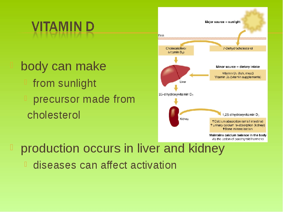body can make from sunlight precursor made from cholesterol production occurs...