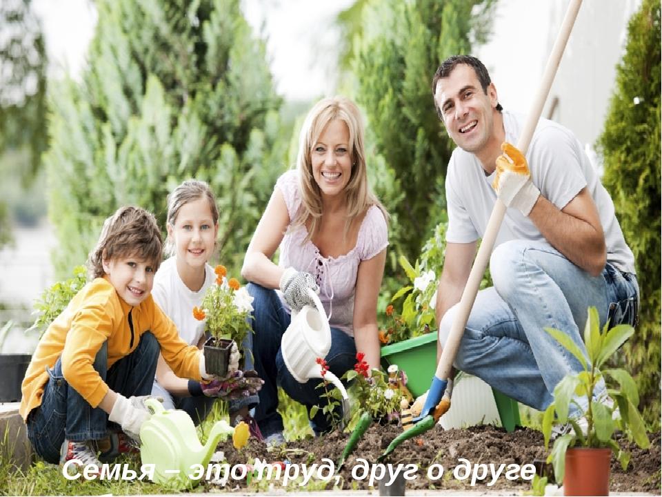 Семья – это труд, друг о друге забота