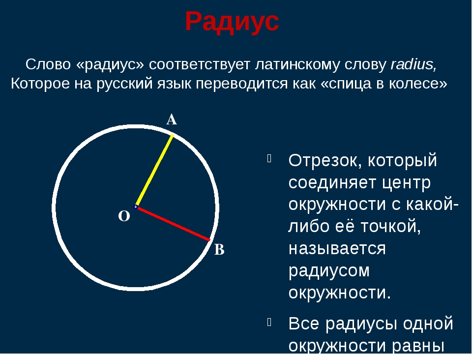 Радиус Отрезок, который соединяет центр окружности с какой-либо её точкой, на...