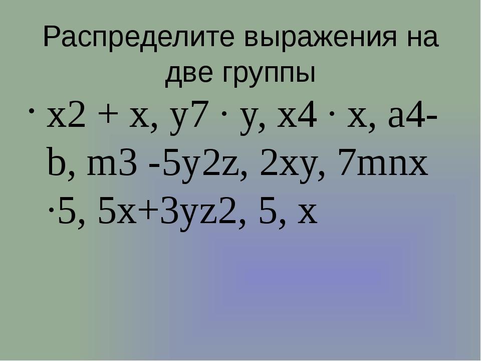 Распределите выражения на две группы x2 + x, y7 ∙ y, x4 ∙ x, a4-b, m3 -5y2z,...