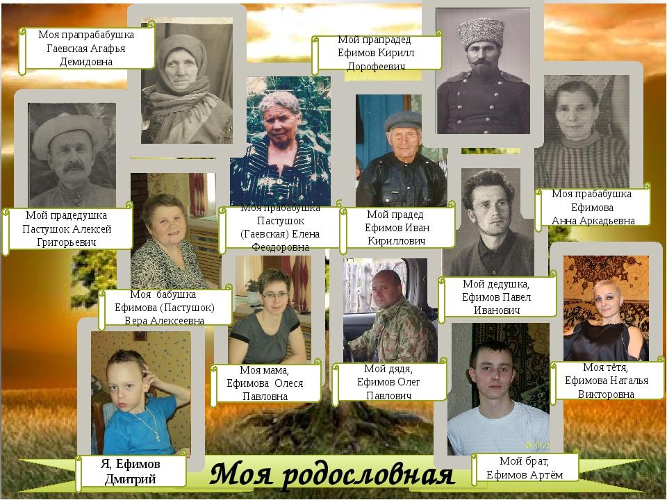 Моя родословная Я, Ефимов Дмитрий Моя мама, Ефимова Олеся Павловна Мой брат,...