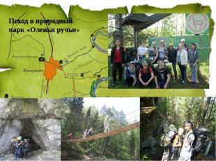 Поход в природный парк «Оленьи ручьи»