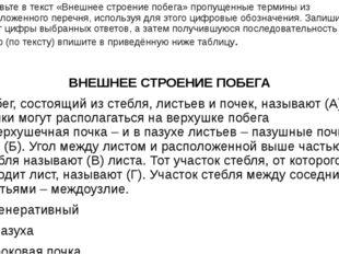 Вставьте в текст «Внешнее строение побега» пропущенные термины из предложенно