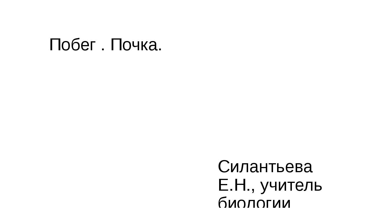 Побег . Почка. Силантьева Е.Н., учитель биологии МБОУ «Хоринская СОШ №2»