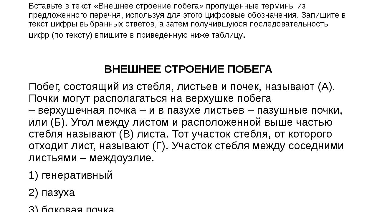 Вставьте в текст «Внешнее строение побега» пропущенные термины из предложенно...