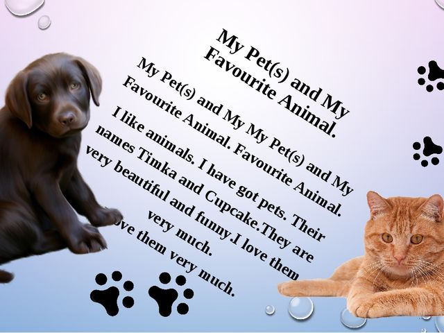 My Pet(s) and My My Pet(s) and My Favourite Animal. Favourite Animal. I lik...