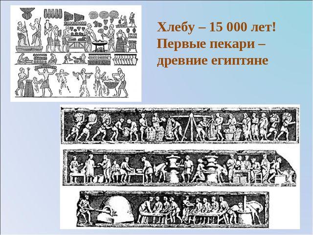Хлебу – 15 000 лет! Первые пекари – древние египтяне