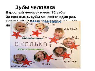 Зубы человека Взрослый человек имеет 32 зуба. За всю жизнь зубы меняются од