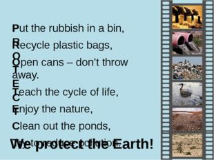 Put the rubbish in a bin, Recycle plastic bags, Open cans – don't throw away.