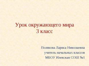 Урок окружающего мира 3 класс Полякова Лариса Николаевна учитель начальных кл