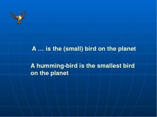 A … is the (small) bird on the planet A humming-bird is the smallest bird on